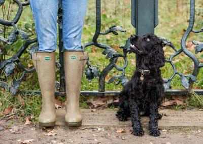Clare J Sheridan Photography - A black Cocker Spaniel sat next to its owners legs